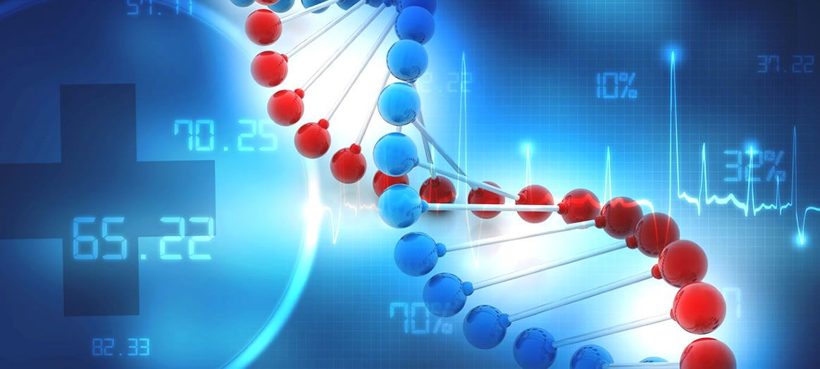 Scientists discover how a gene mutation causes autism